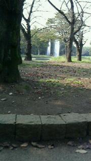 151022.代々木公園-2.jpg