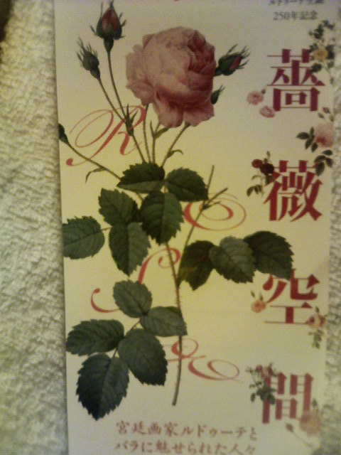 「薔薇空間」チケット-080612.jpg