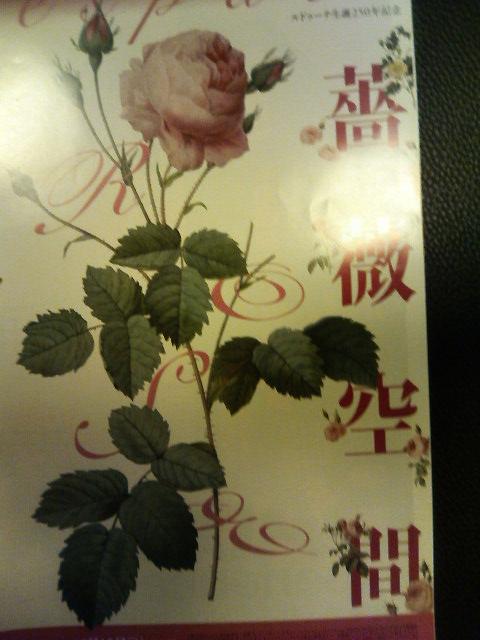 「薔薇空間」パンフ-080612..jpg