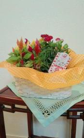 母の日の花-170511..jpg