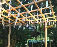 氷川神社、風鈴まつり-3.jpg