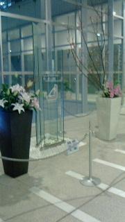 河津桜にストックに。。-160113.jpg
