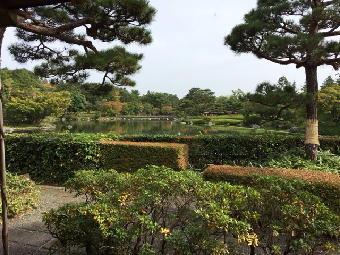 IMG_0603-昭和記念公園-5-日本庭園-2016.jpg