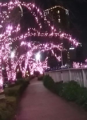 クリスマスイルミネーション-2018-8-_193819.jpg